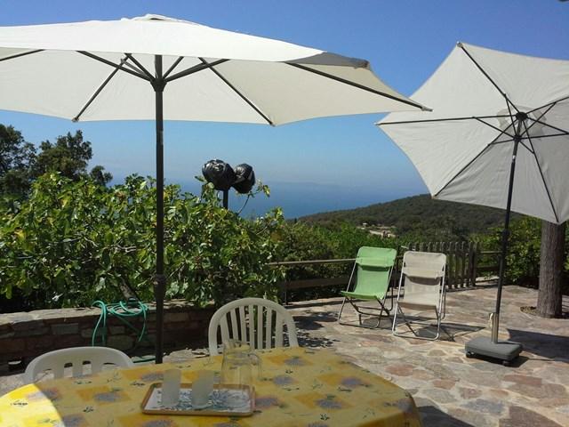 Location vacances Villa BORMES LES MIMOSAS